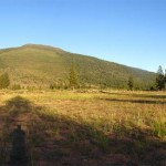 Panorama of improved Whaleback LZ, July 2010. The Whaleback in center background, Mt. Shasta on right.